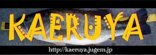 20061204_97318.jpg